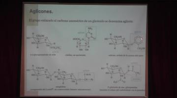 Química Orgánica II 2015, 12 de Mayo