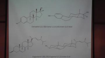 Química Orgánica II 20 de Mayo