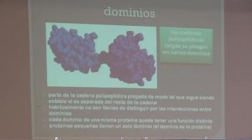 Química Biológica 2015.  12 de Agosto 2º Teórica Estructura Tridimensional de las Proteínas.
