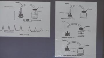 Química Analítica Instrumental 2015 3 de Septiembre Electroforesis Capilar