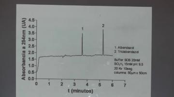 Química Analítica Instrumental 2015 10 de Septiembre Electroforesis Capilar (III)