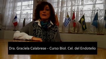 Curso de Actualización: Biología celular del endotelio. Dinámica de la matriz extracelular vascular