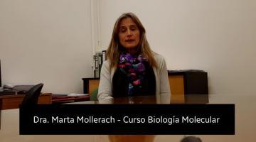 Curso de Actualización: Biología molecular aplicada al laboratorio de bacteriología clínica (teórico-práctico)