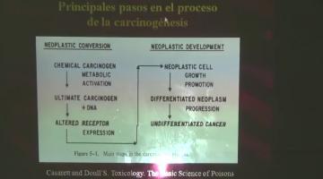 Toxicología y Química Legal 2016 1 de Septiembre Carcinogénesis: mutagénesis.