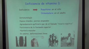 Nutrición y Bromatología 2016 24 de Octubre Vitaminas Liposolubles
