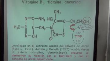 Nutrición y Bromatología 2016 7 de Noviembre Vitaminas Hidrosolubles
