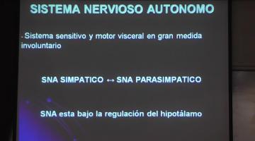 Fisiología 2020. Sistema Nervioso Autónomo.