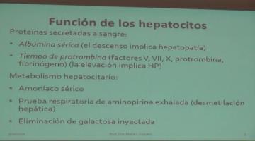 Fisiopato 2017, 22 de Mayo. Fisiopatología Hepática I