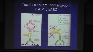 Bioquímica Clínica 2017, 19 de Septiembre. Técnicas en Citología Exfoliativa II.
