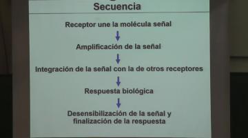 Química Biológica 2018. 9 de Octubre.