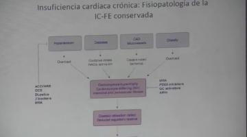 Farmacología 2018. 10 de Octubre.
