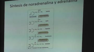 Farmacologia 2019. 30 de Septiembre.