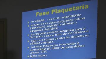 Farmacología (Bca.) 2019. 24 de Octubre.