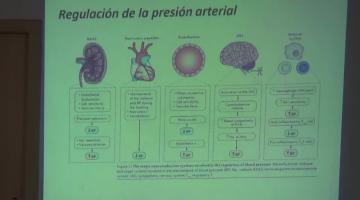 Farmacología II 2020. 12 de Marzo.