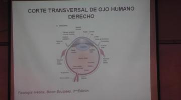 Fisiología 2020. Sentidos Especiales.